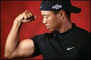 Yes, Tiger, this could be your year