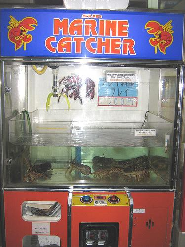 1. Vending machine from Japan turns shopping for seafood into a game of skill.