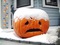 snow_pumpkin2_thumb_250x187