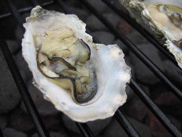 Oysters = Sexytime