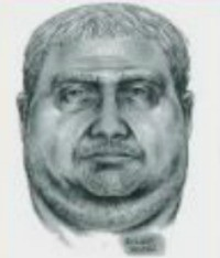 This is a police sketch of the alleged groper.