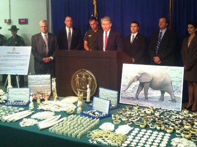Wildlife authorities estimate that about 25 elephants were killed to make the relatively small amount of trinkety crap spread out in front of Manhattan District Attorney Cy Vance.