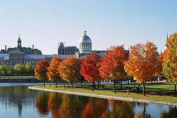 320px_march_bonsecours_and_foliage_thumb_250x167