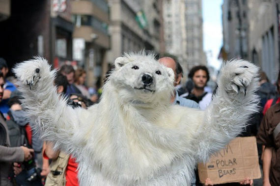 One of the arrested people was dressed like a polar bear, or perhaps was a polar bear.